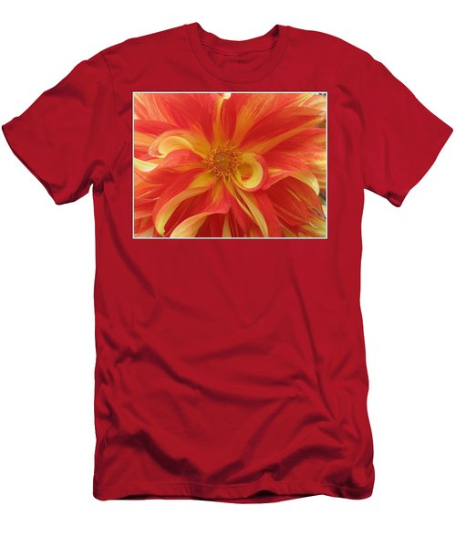 Dahlia Unfurling In Yellow And Red Men's T-Shirt (Slim Fit) by Dora Sofia Caputo Photographic Art and Design