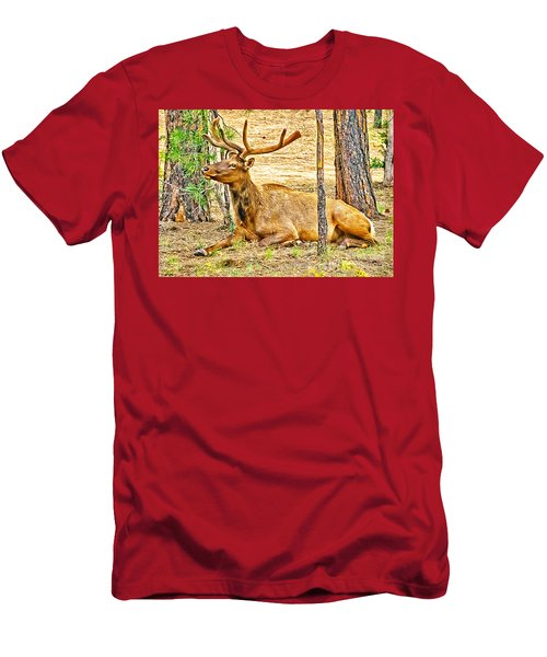 Elk In Kiabab National Forest Arizona Men's T-Shirt (Athletic Fit)