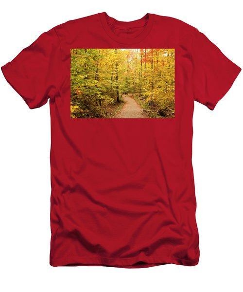 Empty Trail Runs Through Tall Trees Men's T-Shirt (Athletic Fit)