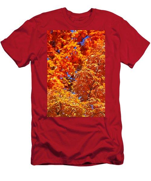 Fall Foliage Colors 17 Men's T-Shirt (Athletic Fit)
