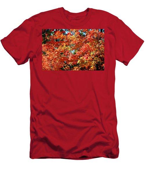 Fall Foliage Colors 22 Men's T-Shirt (Athletic Fit)