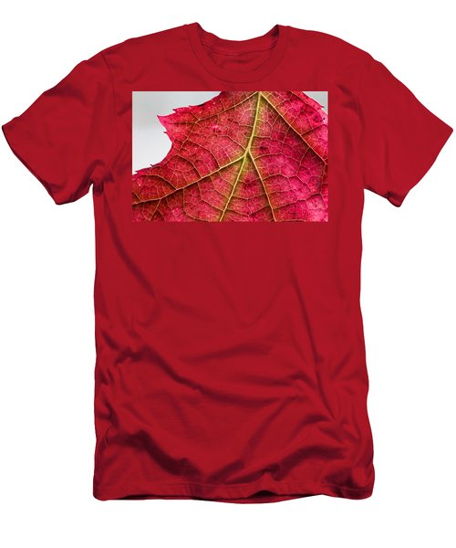 Fall Leaf Men's T-Shirt (Athletic Fit)