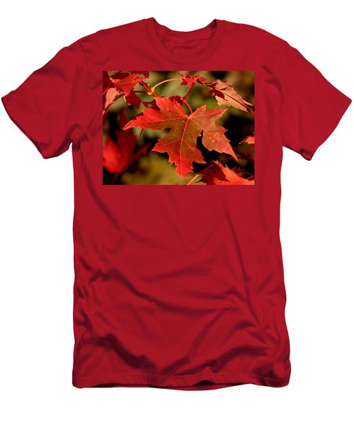 Fall Red Beauty Men's T-Shirt (Athletic Fit)
