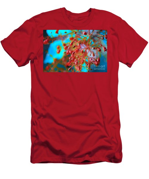 Fiery Red Clusters - Illawarra Flame Tree Men's T-Shirt (Athletic Fit)