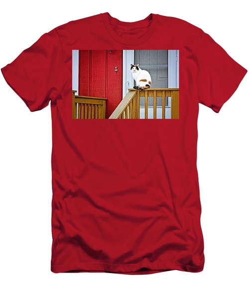 Front Porch Cat Men's T-Shirt (Athletic Fit)