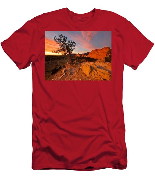 Garden Sunrise Men's T-Shirt (Athletic Fit)