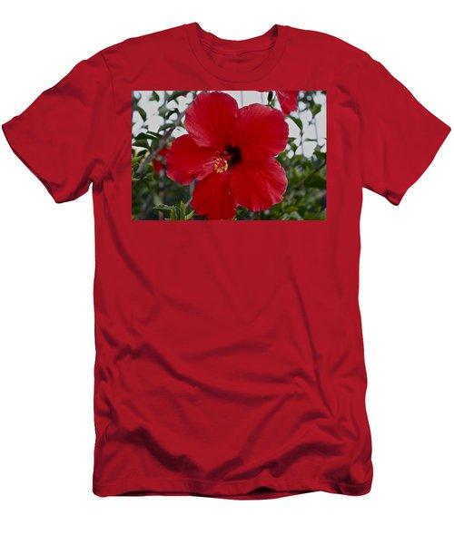 Gumamela2 Men's T-Shirt (Athletic Fit)