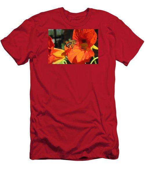 Honeybee Entering Nasturtium Men's T-Shirt (Slim Fit) by Lucinda VanVleck