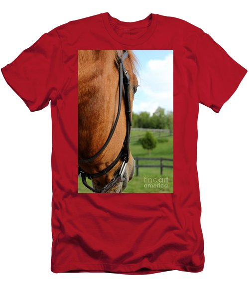 Horse View Men's T-Shirt (Athletic Fit)