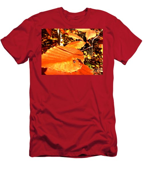 Ladybug At Fall Men's T-Shirt (Athletic Fit)
