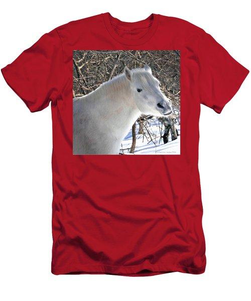 Love Is...paso Fino Stallion Smiles  Men's T-Shirt (Athletic Fit)