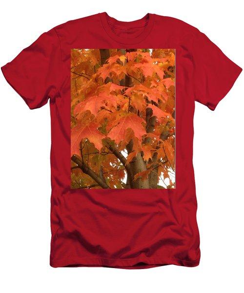 Maple Orange Men's T-Shirt (Slim Fit) by Pema Hou