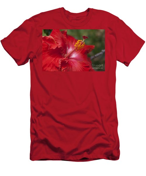 Morning Whispers Men's T-Shirt (Athletic Fit)