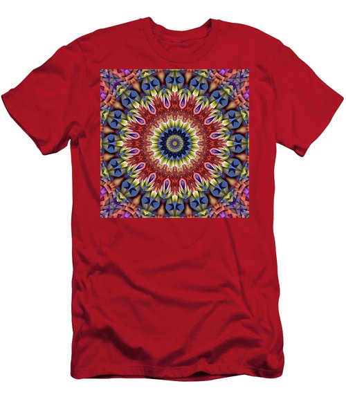 Natural Attributes 13 Square Men's T-Shirt (Slim Fit) by Wendy J St Christopher