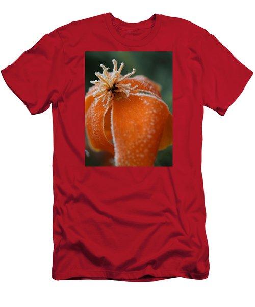 Natures Frost Men's T-Shirt (Athletic Fit)