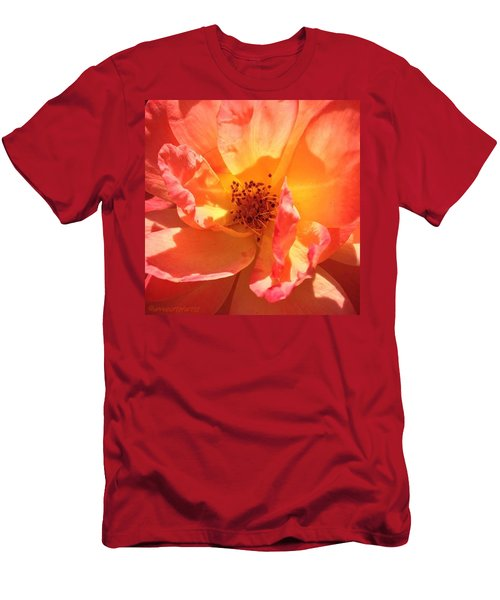 Orange Confection Rose Men's T-Shirt (Athletic Fit)