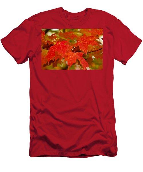 Ravishing Fall Men's T-Shirt (Athletic Fit)