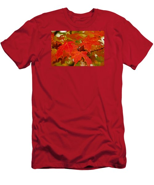 Ravishing Fall Men's T-Shirt (Athletic Fit)