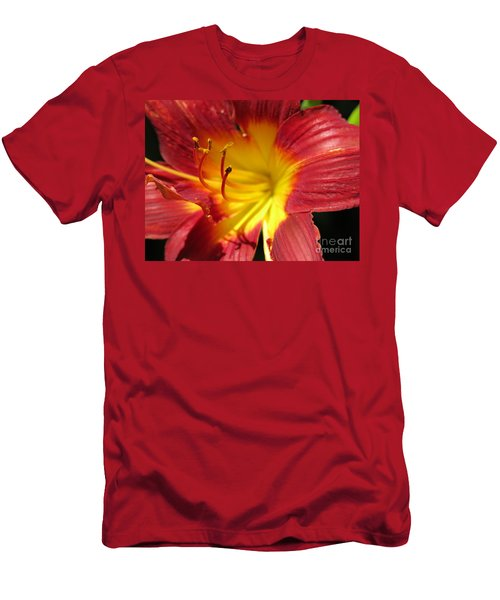 Red And Yellow Day Lily Men's T-Shirt (Athletic Fit)