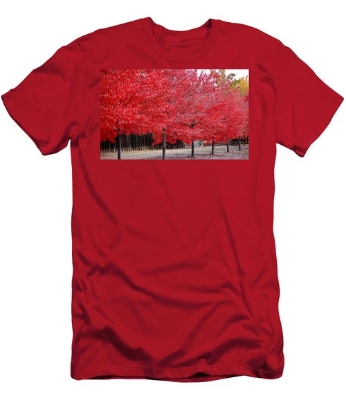 Red Tree Line Men's T-Shirt (Slim Fit)