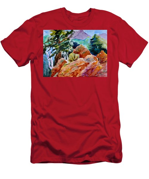 Rocks Near Red Feather Men's T-Shirt (Athletic Fit)