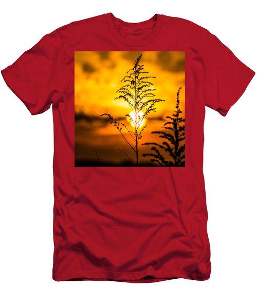 Setting Sun Men's T-Shirt (Athletic Fit)