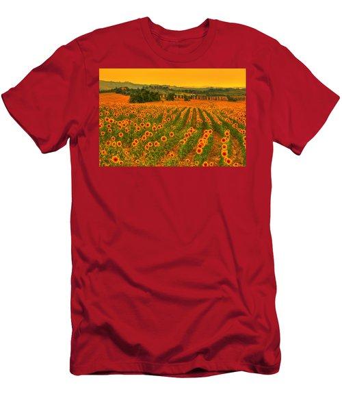Sunflower Dream Men's T-Shirt (Athletic Fit)