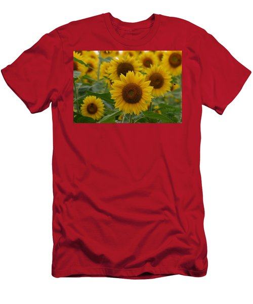 Sunflowers At The Farm Men's T-Shirt (Athletic Fit)