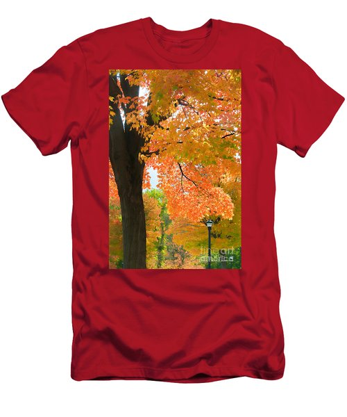 Sunny Fall Day By David Lawrence Men's T-Shirt (Athletic Fit)