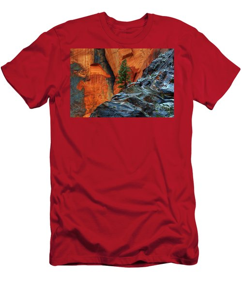 The Beauty Of Sandstone Zion Men's T-Shirt (Slim Fit) by Bob Christopher