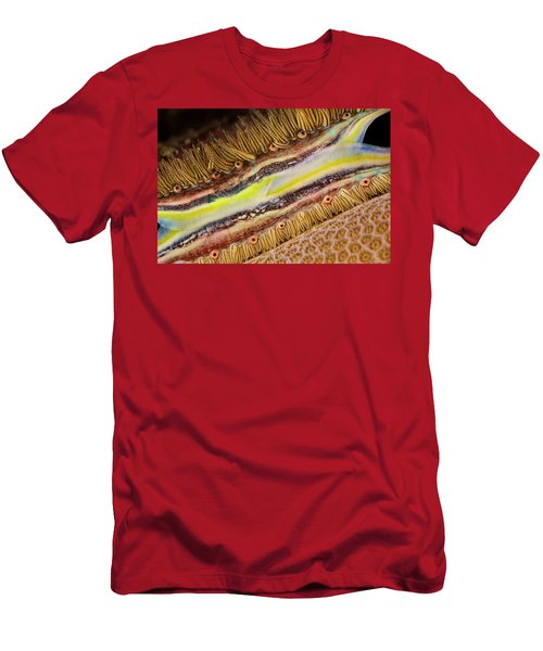 The Brightly Colored Mantle And Rows Men's T-Shirt (Athletic Fit)