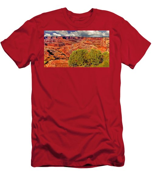 The Grand Canyon Dead Horse Point Men's T-Shirt (Athletic Fit)