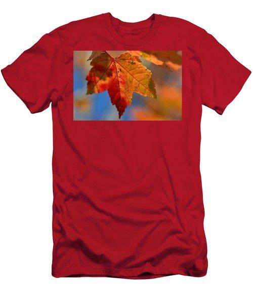 ...through The Autumn Light Men's T-Shirt (Athletic Fit)