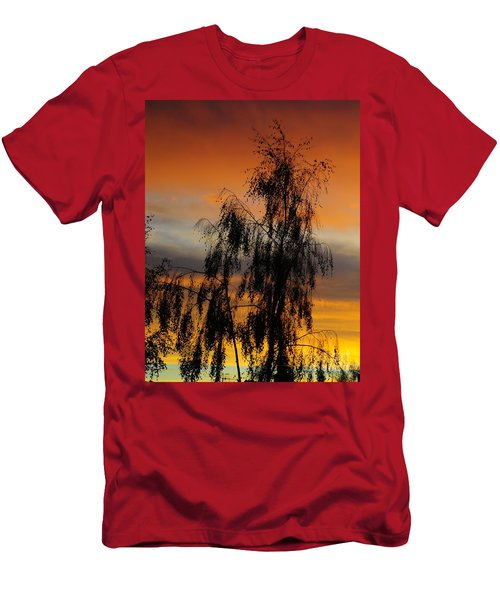 Trees In The Sunset Men's T-Shirt (Athletic Fit)