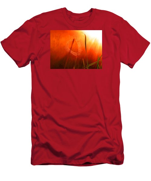 The Spider's Web In Golden Sunlight Men's T-Shirt (Athletic Fit)