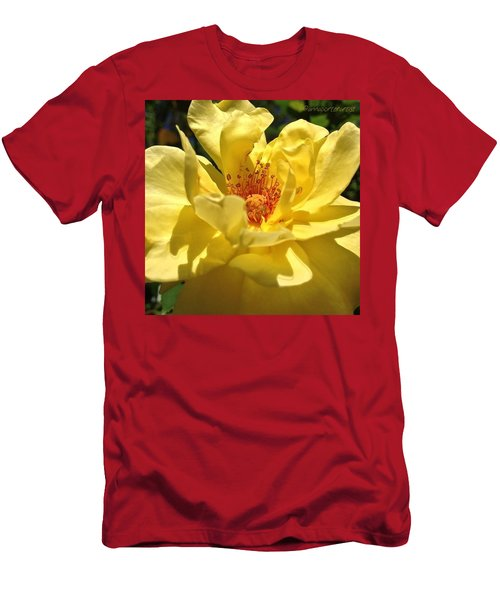 Yellow Monday Rose Men's T-Shirt (Athletic Fit)