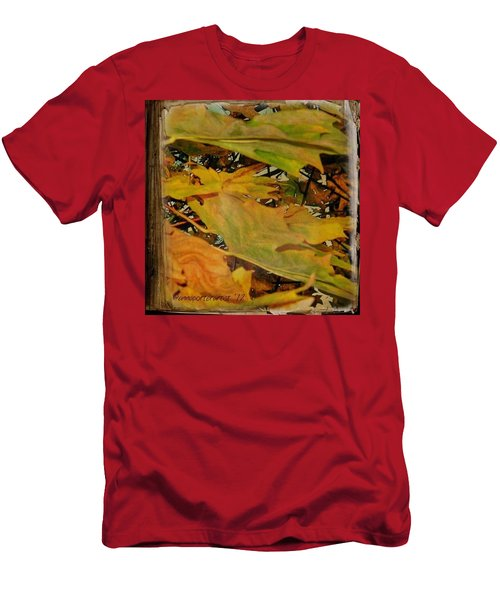 Book Of Leaves  Men's T-Shirt (Athletic Fit)