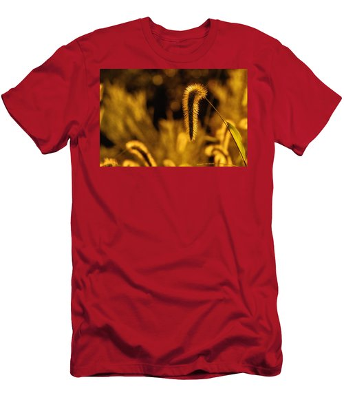 Grass In Golden Light Men's T-Shirt (Athletic Fit)
