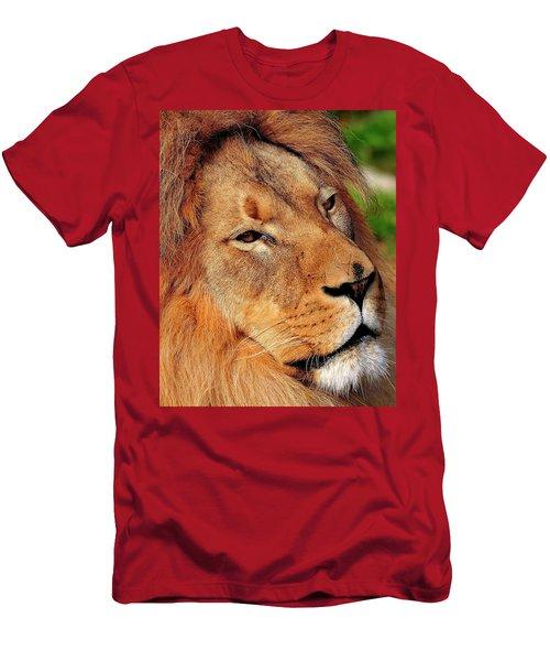 Portrait Of The King Men's T-Shirt (Athletic Fit)