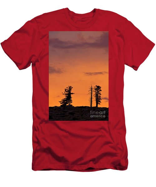Trees At Sunset Men's T-Shirt (Athletic Fit)