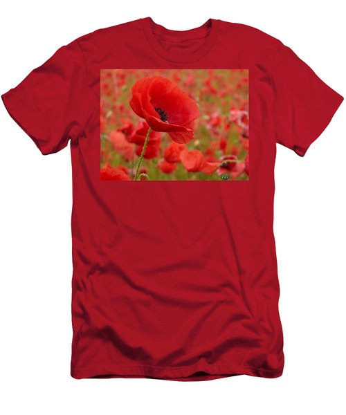 Red Poppies 3 Men's T-Shirt (Slim Fit) by Jouko Lehto