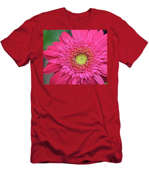 Gerbera Daisy Men's T-Shirt (Slim Fit) by Ronda Ryan