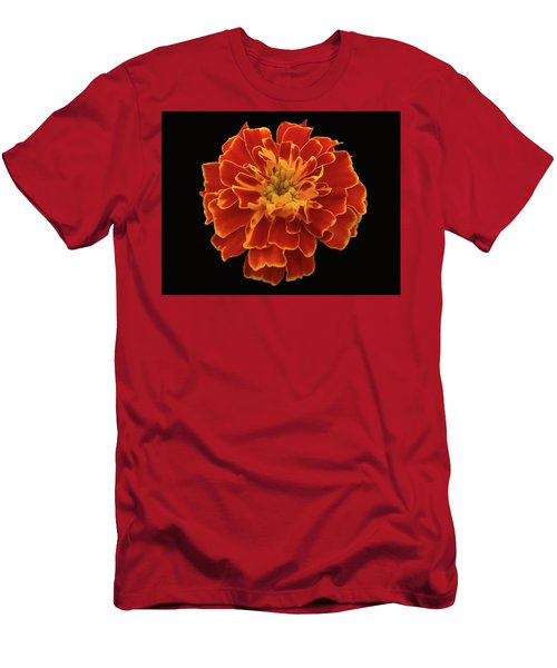 Home Grown Marigold Men's T-Shirt (Athletic Fit)