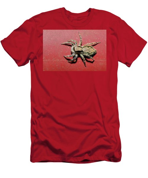 Jumping Spider Men's T-Shirt (Athletic Fit)