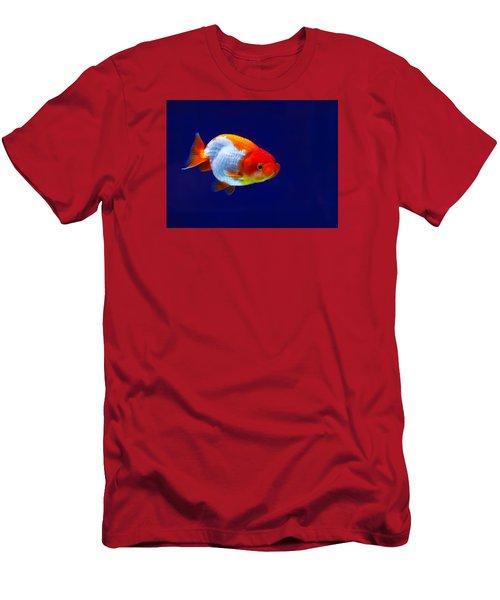 Lion Head Goldfish 4 Men's T-Shirt (Athletic Fit)