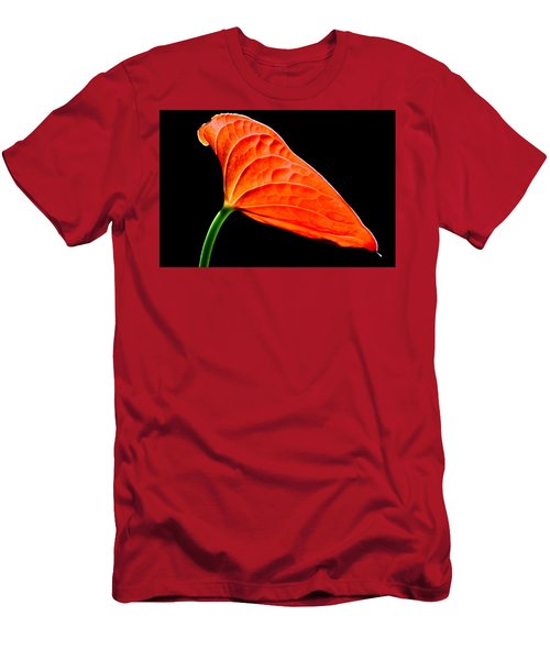 red Lily blossom Men's T-Shirt (Slim Fit) by Werner Lehmann