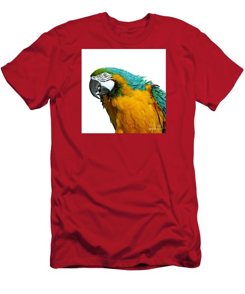 Macaw Bird Men's T-Shirt (Athletic Fit)