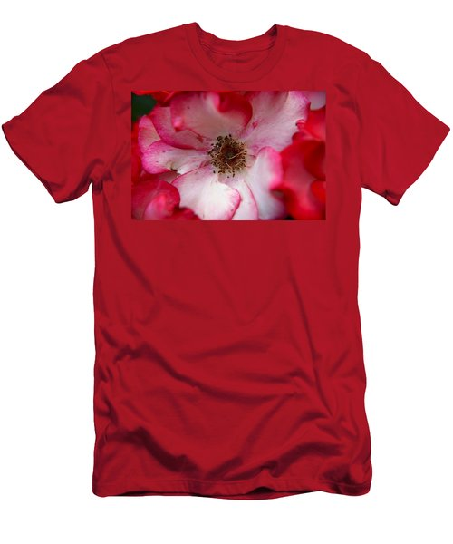 A Bee's Heaven Men's T-Shirt (Athletic Fit)