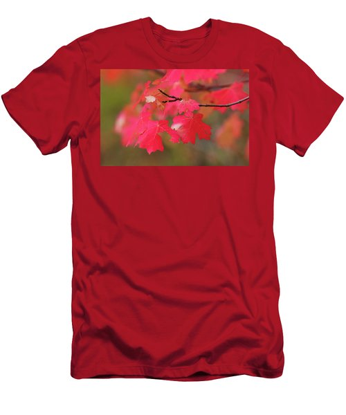 A Flash Of Autumn Men's T-Shirt (Athletic Fit)