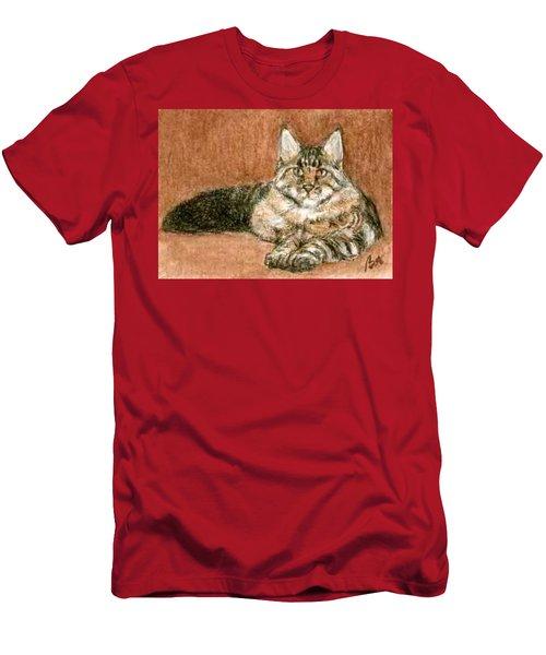 Aceo Maine Coon Cat Men's T-Shirt (Athletic Fit)